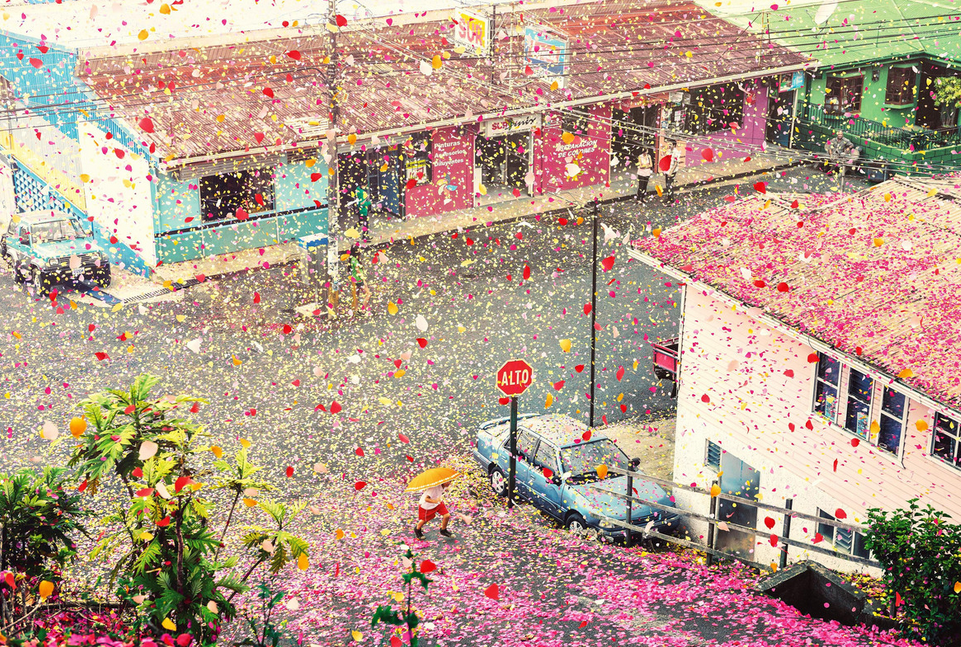 flower_explosion_street