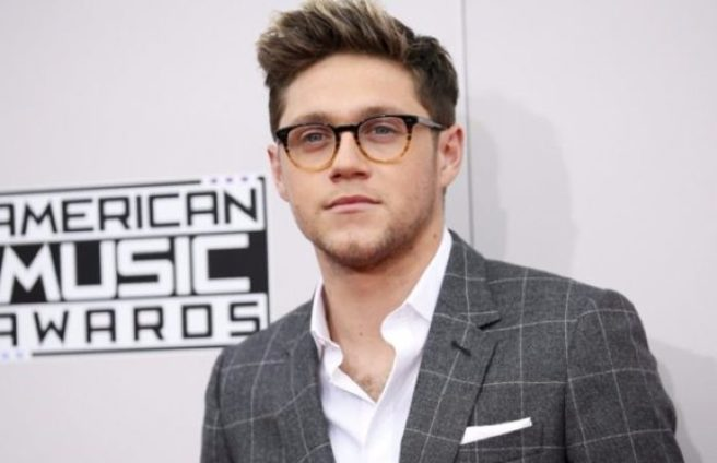 Niall Horan's Debut Album Is Coming! See The Close-Up Cover Art