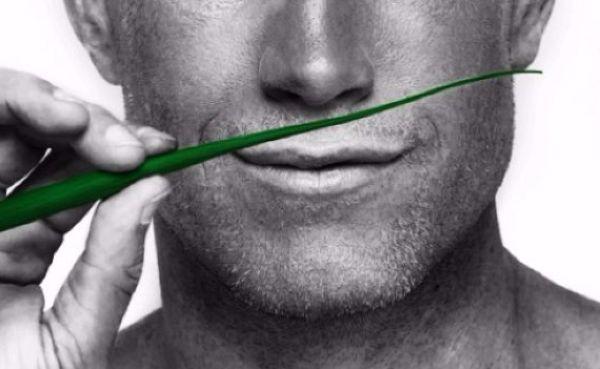 Ronan O'Gara to take up New Zealand posting in January